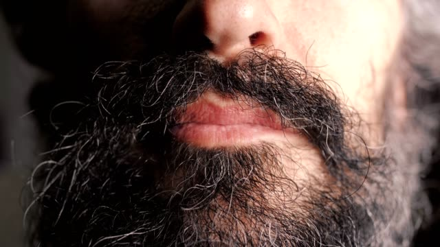close up of the face of a middle aged handsome brunette man with a partly white-haired curly beard, touching it and smiling, portraiture - barba peluria del viso video stock e b–roll