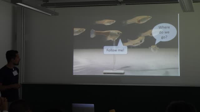 Close up of the fieldwork recordings screened during the presentation of professor Dr Tim Landgraf about biomimetic robots and learning systems for...
