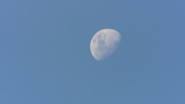 close up of the moon rising against a blue sky, detail in the white moon - moon phase, waning gibbous - day stock videos & royalty-free footage