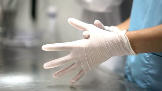 Close up of unrecognizable woman putting on protective gloves at a clinic