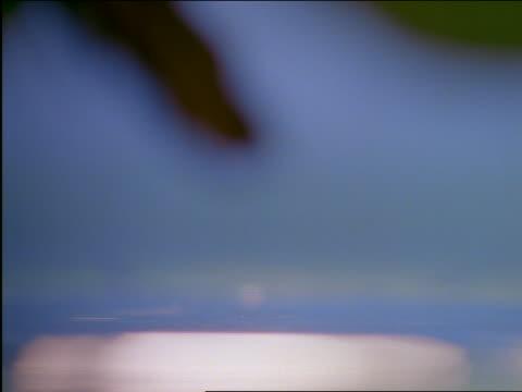 vídeos de stock e filmes b-roll de close up of water dripping into water - cinematografia