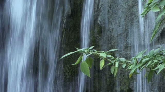 vidéos et rushes de close up of water falling over a rock face. - rock face