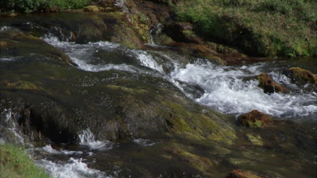 close up of water streaming down mossy rocks - riverbank stock videos & royalty-free footage