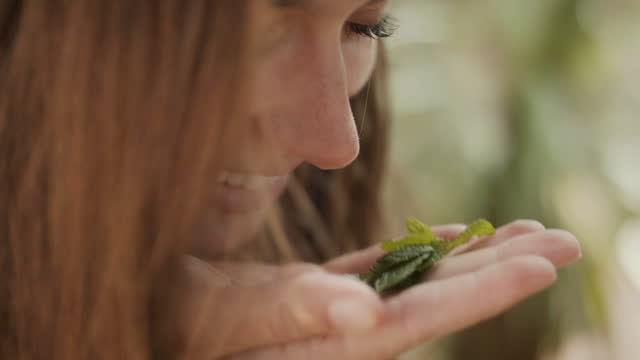 close up of woman smelling fresh herbs in her hand - one mid adult woman only stock videos & royalty-free footage