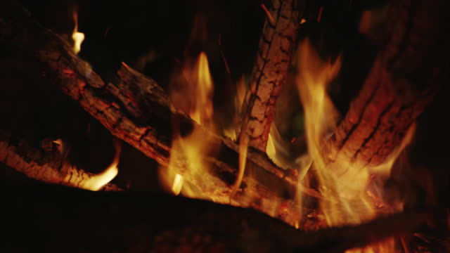 Close up of wood burning and fire