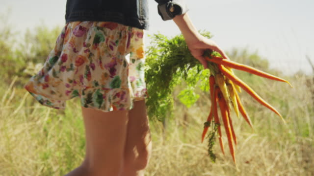close up of young woman walking with freshly picked vegetables - carrot stock videos and b-roll footage