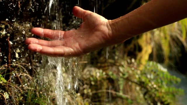 Close up on woman's hands cupped catching water from waterfall