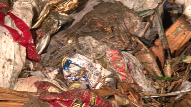 vídeos de stock, filmes e b-roll de close up pan left - filth covered trash / new orleans louisiana - saco de lixo