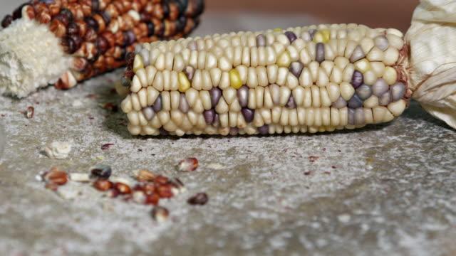 vídeos y material grabado en eventos de stock de close up panning view of indian corn on grinding stone - maíz alimento