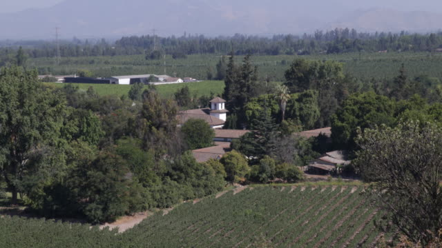 close up panshot down a hill showing details the green vineyards trees and houses with mountains on the horizon in calera de tango chile calera de... - jesuit stock videos and b-roll footage
