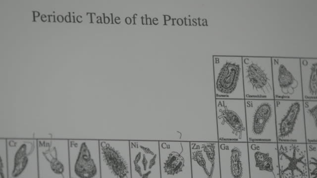 Close up, Periodic Table of Protista