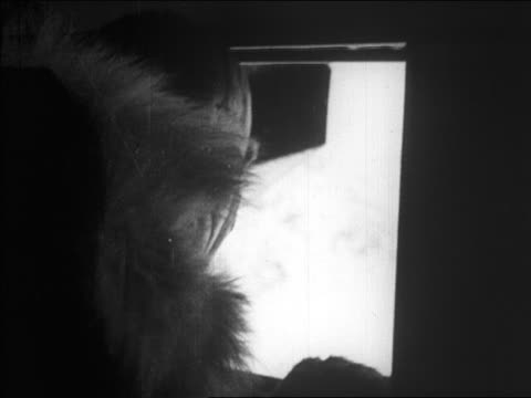 close up pilot looking out of window during richard byrd's flight over north pole / newsreel - 1926 stock videos & royalty-free footage