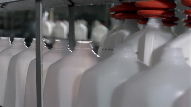 close up plastic jugs being filled with milk on conveyor belt at dairy factory - milk jug stock videos & royalty-free footage
