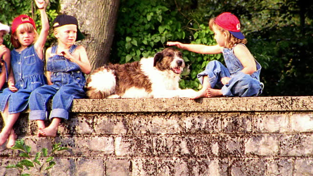 close up PAN PORTRAIT group of children in overalls sitting on bridge waving to camera / girl petting dog
