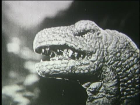 b/w close up profile tyrannosaurus rex licking lips + roaring - tyrannosaurus rex stock videos and b-roll footage