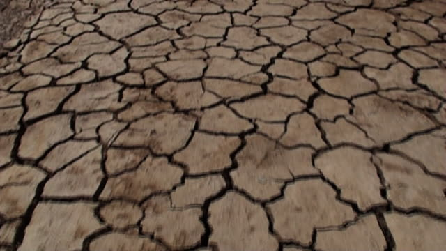 close up push-in - cracks criss-cross over a dried mud plain. / kenya - 乾的 個影片檔及 b 捲影像