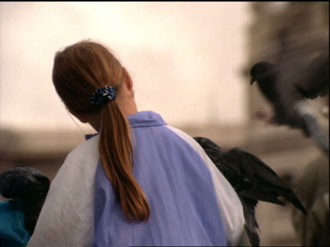 close up rearview pigeons landing on young girl's arm (feeding) / england - nur mädchen stock-videos und b-roll-filmmaterial