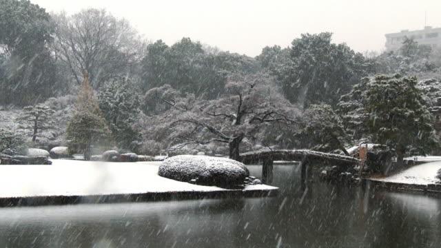 close up rikugien gardens winter snow - 整形式庭園点の映像素材/bロール
