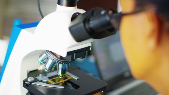 close up, scientist analyzes microscopic image - mikrobiologie stock-videos und b-roll-filmmaterial