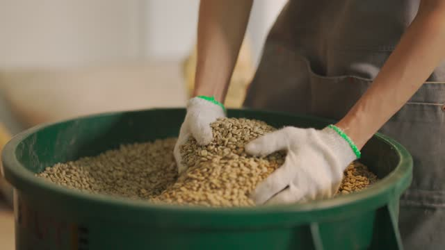 close up senior man craftsperson pair of hand holding handful of raw coffee bean from bucket - pair stock videos & royalty-free footage