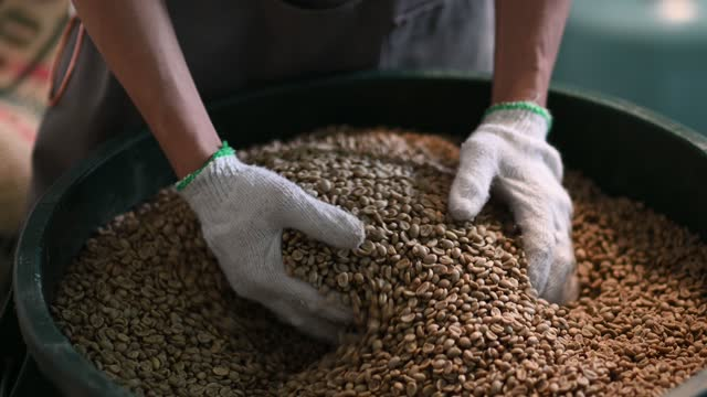 close up senior man pair of hand holding handful of raw coffee bean from bucket - pair stock videos & royalty-free footage