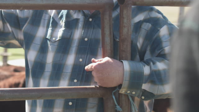 close up senior rancher hands to face as he gives instructions - rancher stock videos & royalty-free footage