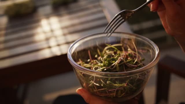 close up shot of a bowl of microgreens being eaten on balcony - eaten stock videos & royalty-free footage