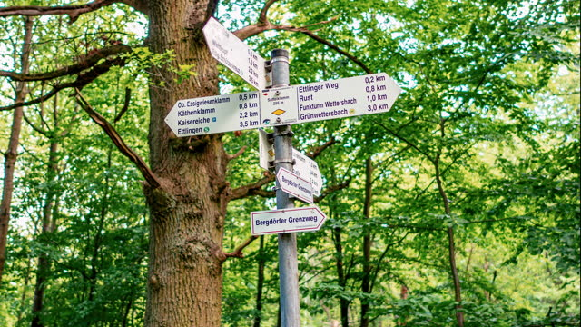 close up shot of a direction sign in the forest - directional sign stock videos & royalty-free footage
