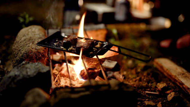 close up shot of a man cooking meat over a campfire - outdoor pursuit stock-videos und b-roll-filmmaterial