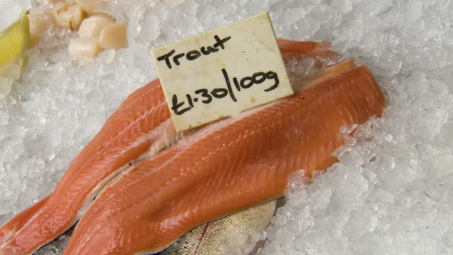 close up shot of a trout sitting on ice - tag 1 stock-videos und b-roll-filmmaterial