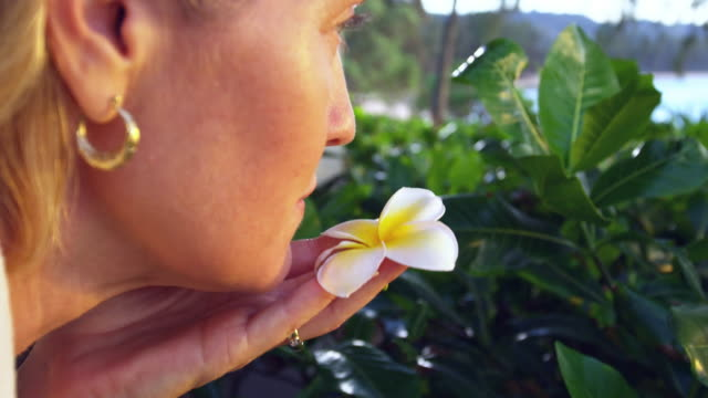 close up shot of a woman lifting a flower to her nose, smelling it - turtle bay hawaii stock videos and b-roll footage