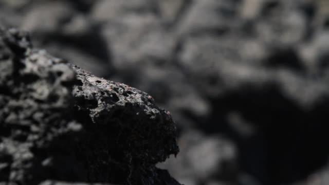 Close up Shot of Basalt Volcanic Rock