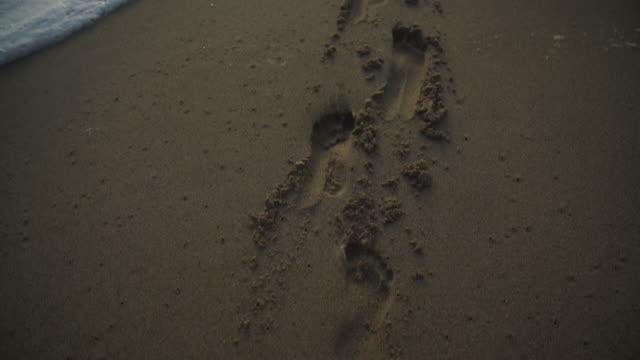 vídeos y material grabado en eventos de stock de cerca de un tiro de huellas en una playa al atardecer - ausencia