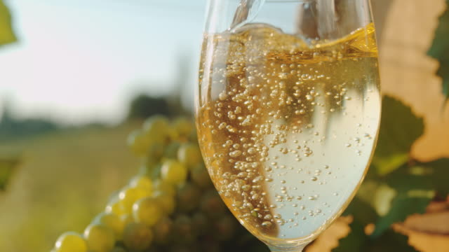 slo mo close up shot of pouring wine into the glass - white wine stock videos & royalty-free footage