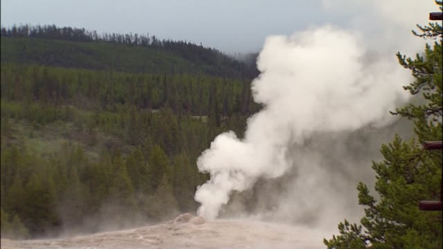 close up shot of the old faithful geyser at yellowstone national park in wyoming. - yellowstone national park stock videos & royalty-free footage