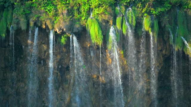 vidéos et rushes de fermez-vous vers le haut du projectile de chute d'eau à l'intérieur d'une forêt verte, parc national de plitvice de lacs - végétation verdoyante