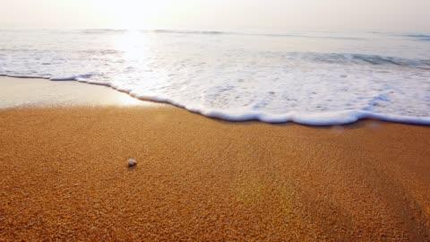 vidéos et rushes de gros coup de vagues roulant vers le haut de la plage de sable blanc - plage