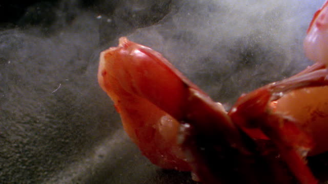 vídeos de stock e filmes b-roll de close up shrimp falling in to smoking frying pan + beginning to cook - camarão
