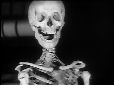 b/w 1936 close up skeleton head + shoulders with mouth opening + closing - human skeleton stock videos and b-roll footage