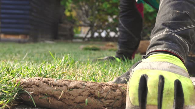 close up slow motion laying down sod - landscaped stock videos & royalty-free footage