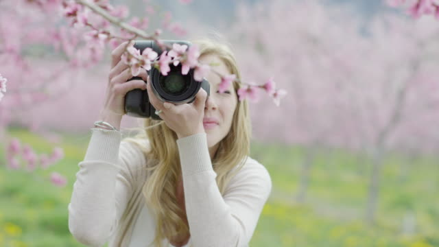 Close up slow motion shot of woman photographing flowers in park / Alpine, Utah, United States