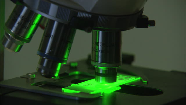 close up static - a green light shines under a microscope in an laboratory. / bloemfontein, south africa - campione medico video stock e b–roll