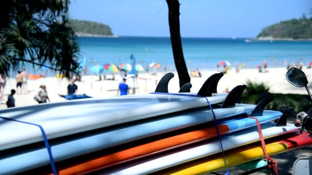 close up surf board near the beach. - surfboard stock videos & royalty-free footage