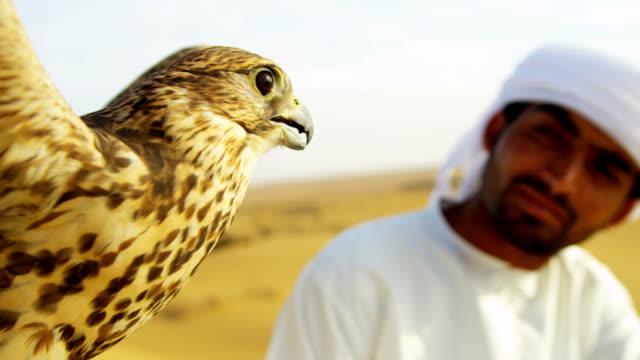 close up tethered bird prey arab falconers wrist - falcon bird stock videos & royalty-free footage