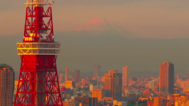 Close up Tokyo Tower and buildings get sun shine