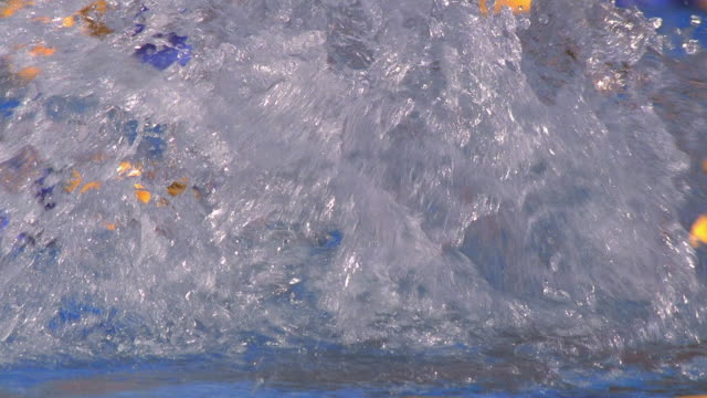 Close up tracking shot female swimmer doing butterfly stroke during race / California