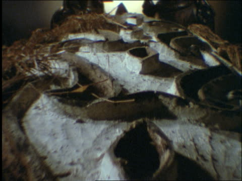 vidéos et rushes de close up tracking shot over carved stone asmat shield to 2 statues / indonesia - groupe moyen d'objets