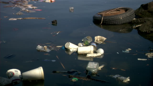 close up trash floating in water/ los angeles, california - polystyrene stock videos & royalty-free footage
