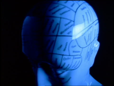 close up turning phrenology head / blue filter - sculpture stock videos & royalty-free footage