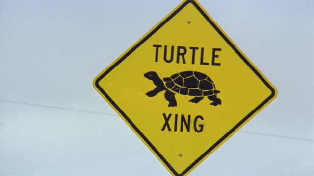 Close up turtle crossing sign